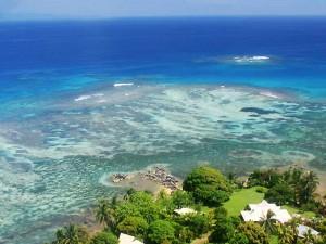 Фиджи Тавеуни
